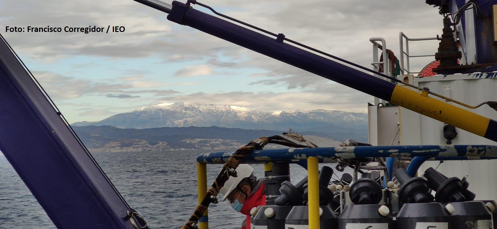 Los científicos recorrerán todo el litoral desde Algeciras a Barcelona. Imagen: Francisco Corregidor / IEO