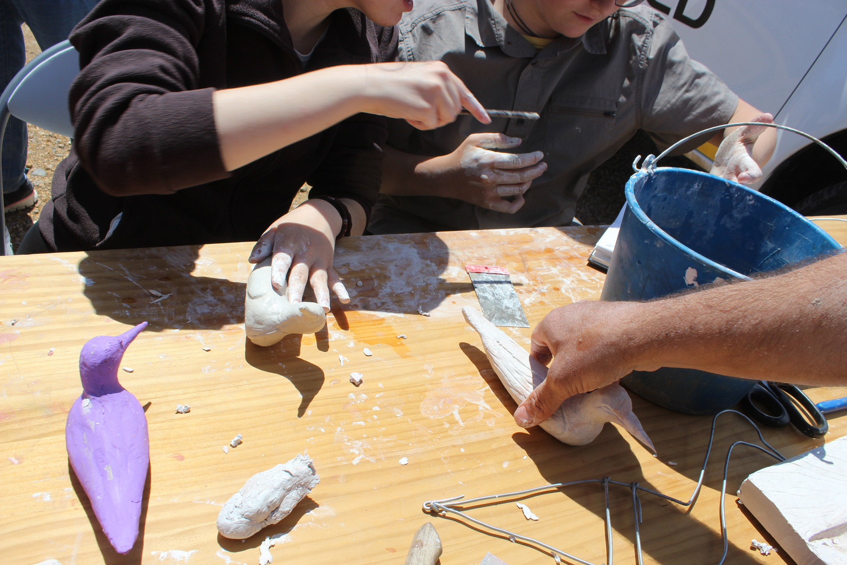 Formación y diversión realizando señuelos de aves. Imagen: EEA