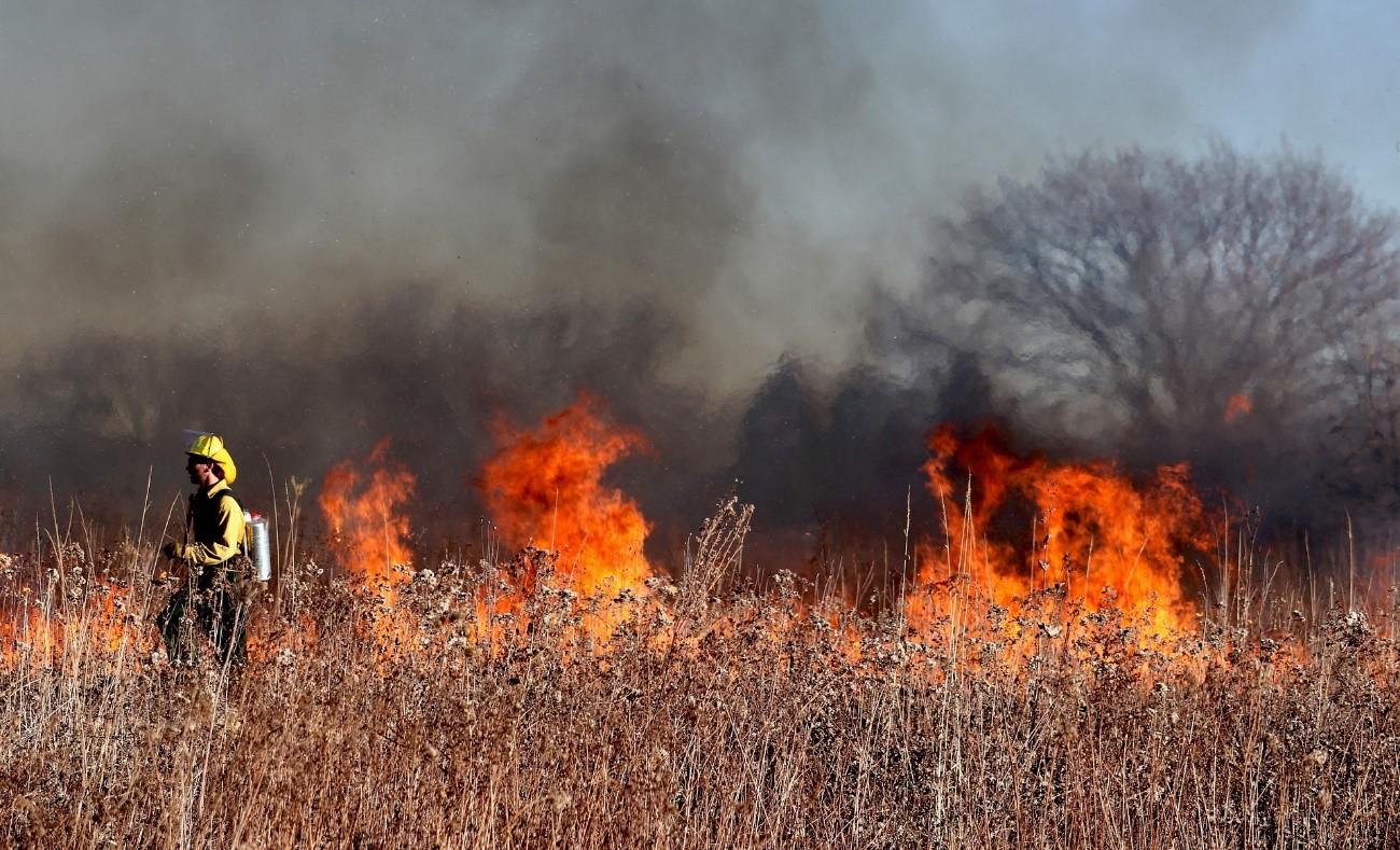 Los vientos secos y las altas temperaturas favorecidas por el cambio climático fomentan el inicio y la propagación de los grandes incendios forestales.  Imagen: Pixabay