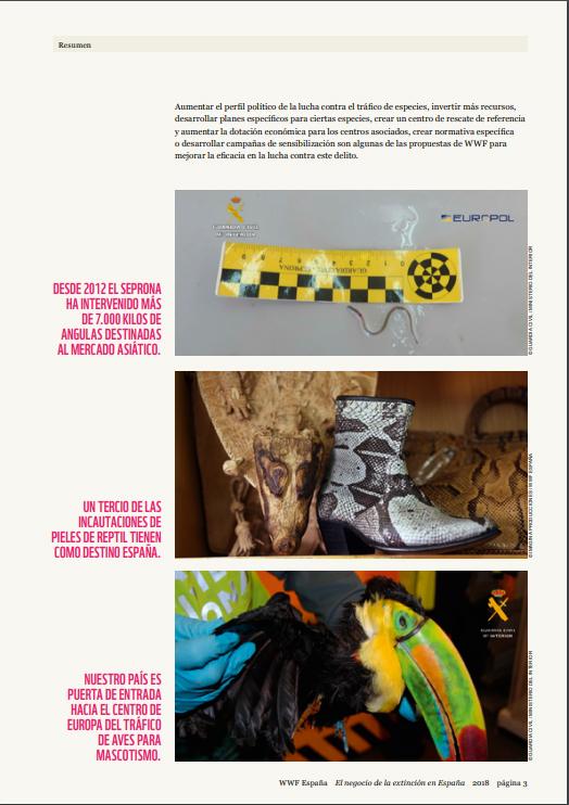Una página del nuevo informe de WWF 'El negocio de la extinción en España'