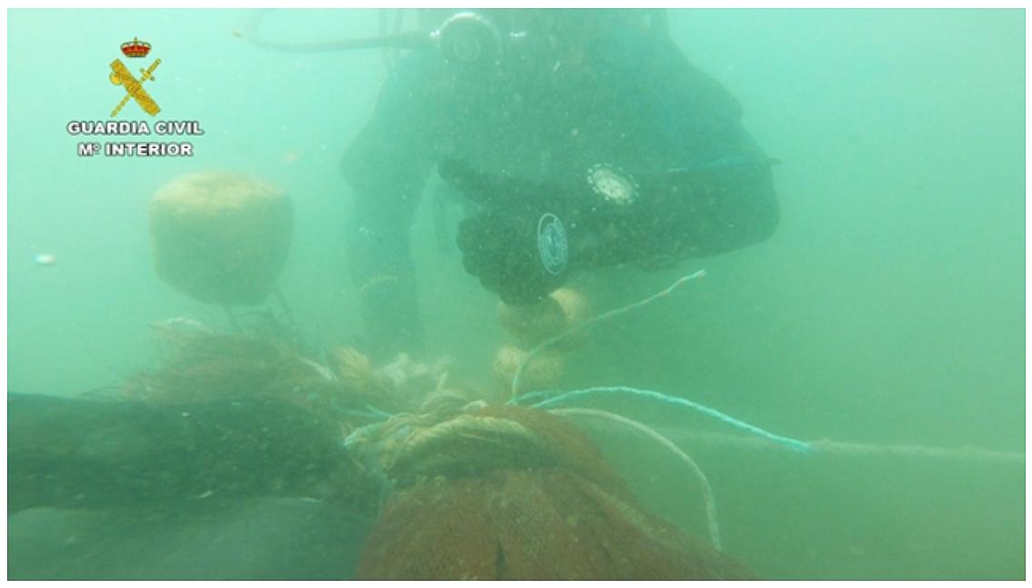 Agentes del Grupo de Actividades Subacuáticas (GEAS) de la Guardia Civil han participado en el dispositivo.  Imagen: Seprona