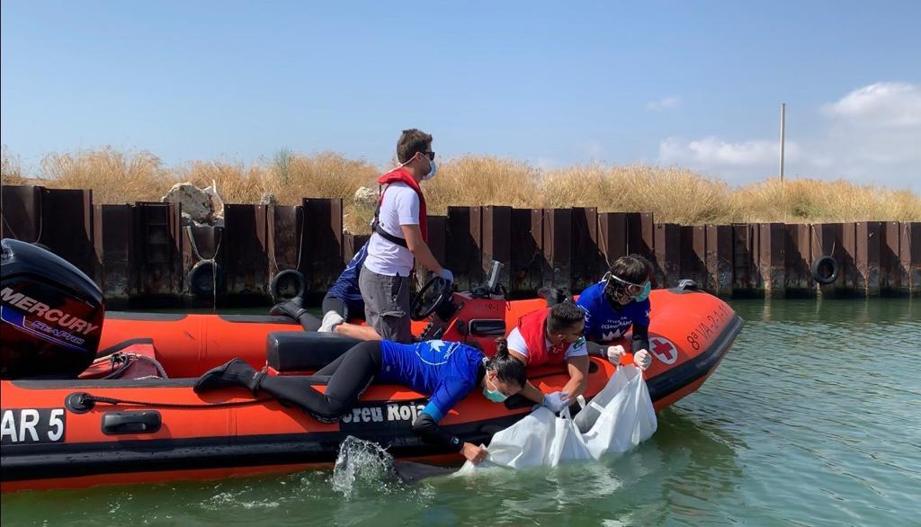 La doctora Rubio-Guerri, en el traslado de un delfín varado en agosto hasta la rampa de la bocana de Pinedo. Imagen: Fundación Oceanogràfic