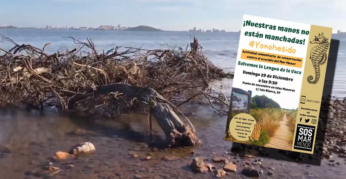 Estado de la zona (imagen extraída del vídeo elaborado por SOS Mar Menor). A la derecha, el cartel anunciando la actividad reivindicativa