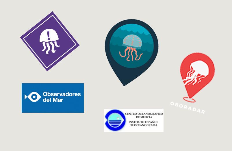 Logotipos de varias de las apps o webs sobre avistamientos de medusas.