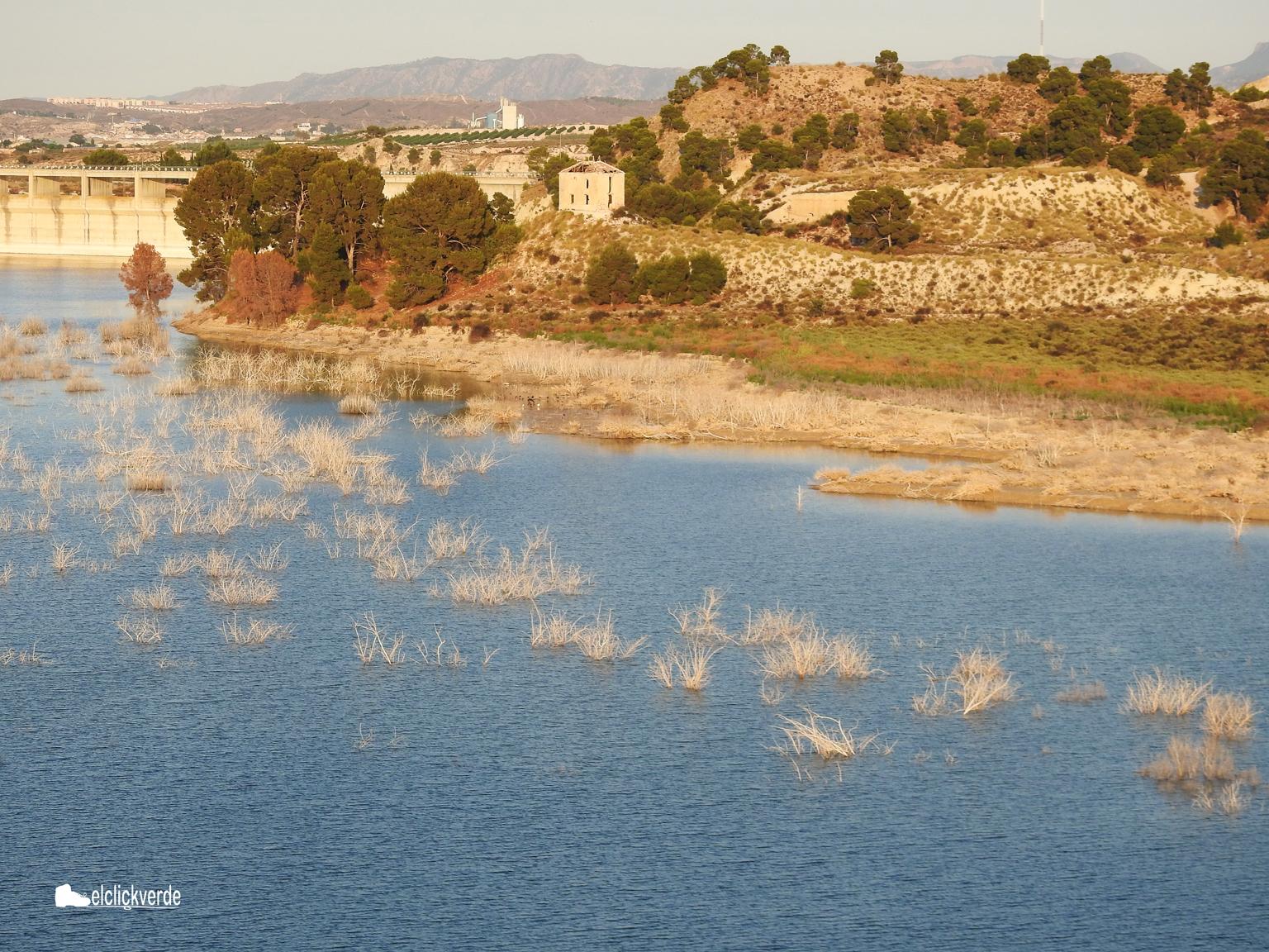 Al fondo, la presa. La orilla es zona de descanso de anátidas, ardeidas y moritos