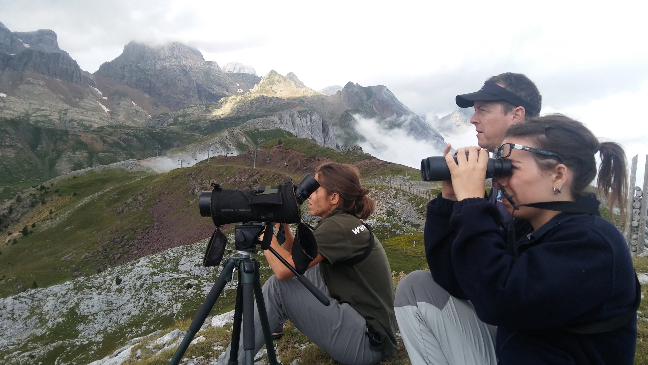 Voluntarios del proyecto Lindus 2. Imagen: SEO/BirdLife