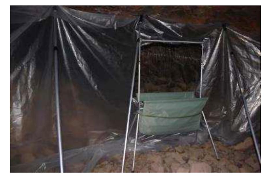 Trampa arpa para capturar murciélagos, instalada en Minado de Carrascoy. Imagen: CARM