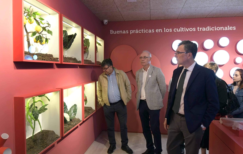 Un espacio de la planta alta aborda los cultivos y aprovechamientos en la huerta de Murcia. Imagen: Ayto. de Murcia