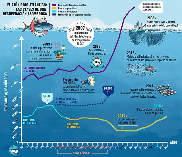 Imagen: Planet tuna / IEO