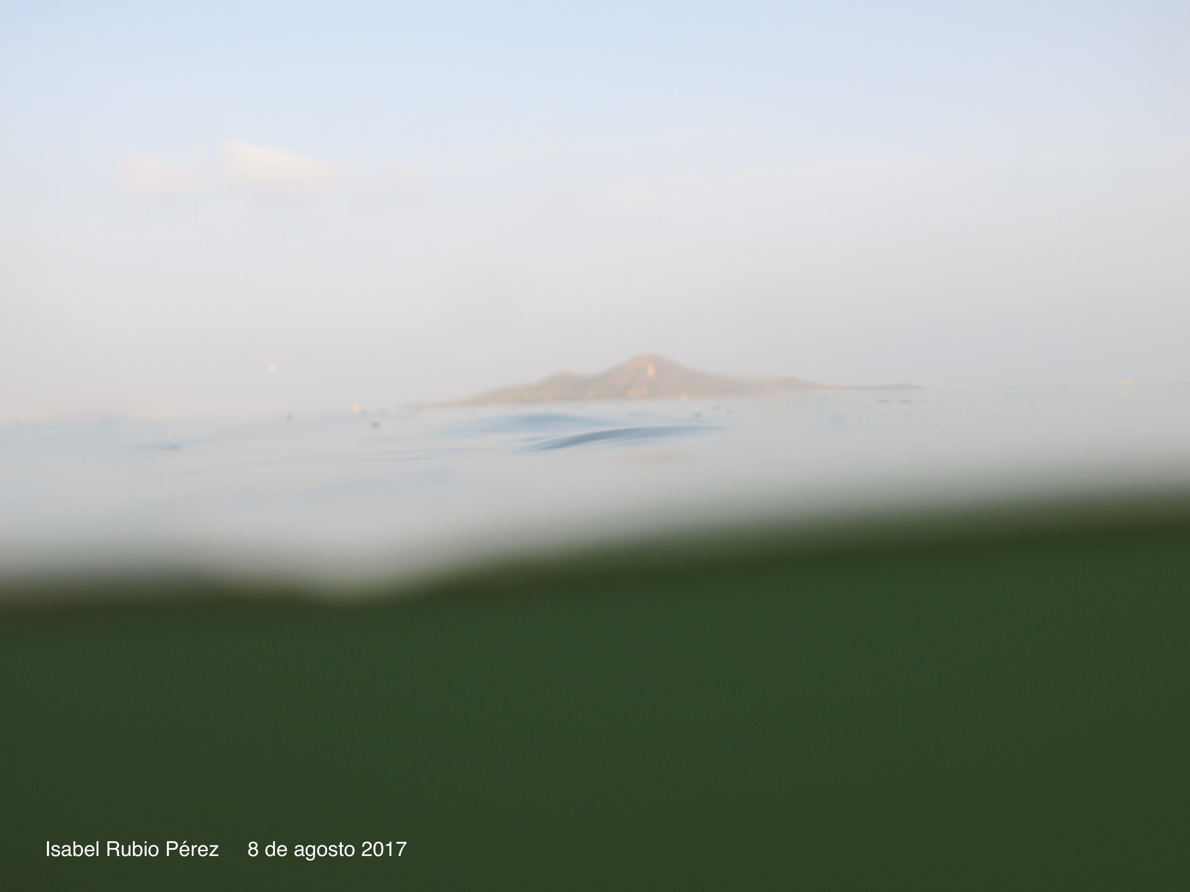 Imagen del agua aportada por Isabel Rubio, de la plataforma Pacto por el Mar Menor