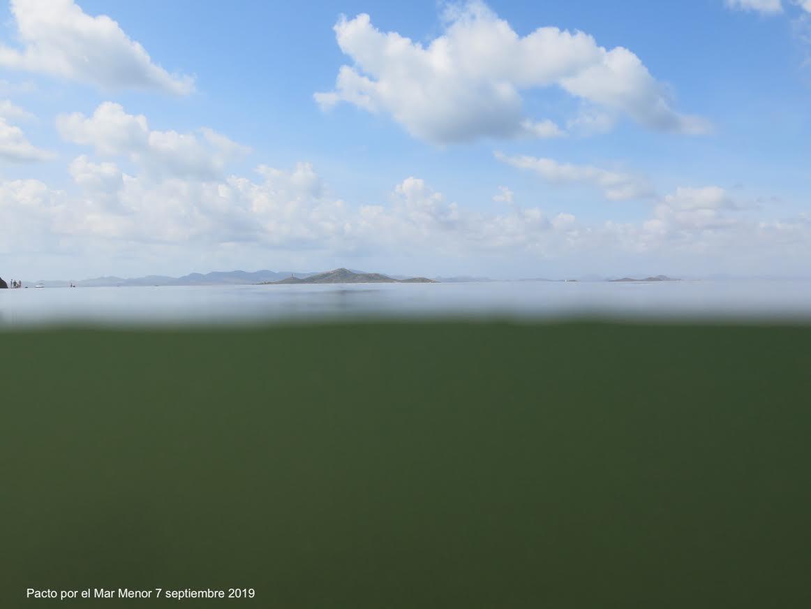 Aspecto del agua de la gran laguna regional. imagen: Pacto por el Mar Menor