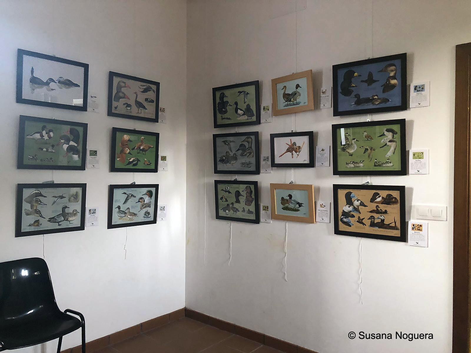 Una esquina llena de fotos en la exposición que ahora mismo hay en la EOT. Imagen: Susana Noguera