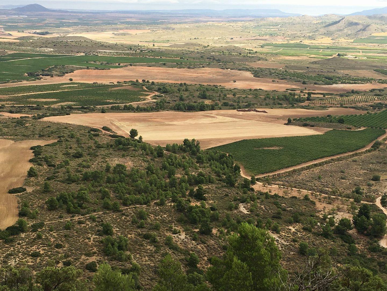 Panorámica de los terrenos removidos para instalar las macrogranjas porcinas. Imagen: Plataforma Salvemos el Arabí y la Comarca
