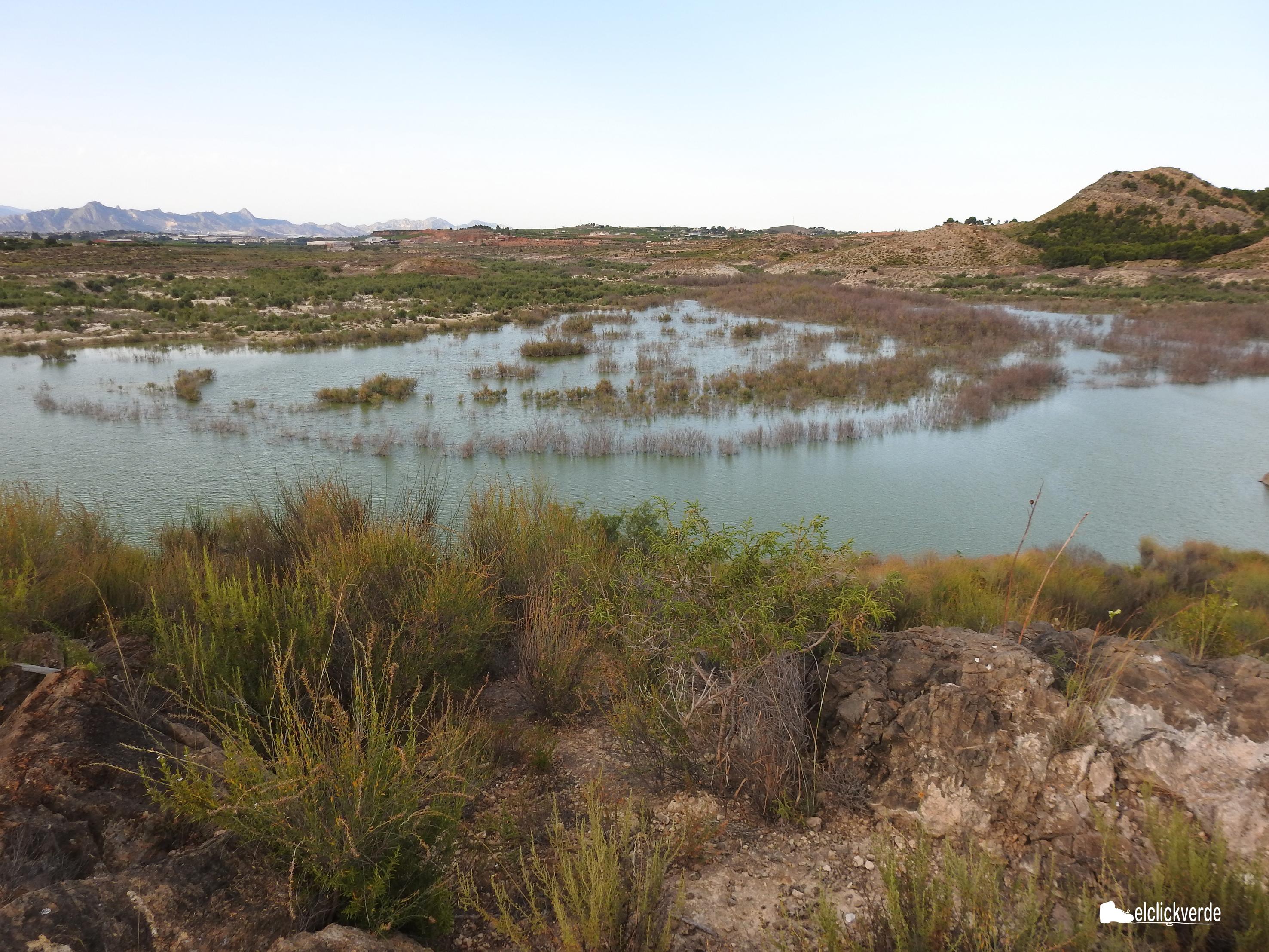 Panorámica del pantano que se divisa desde el pequeño promontorio