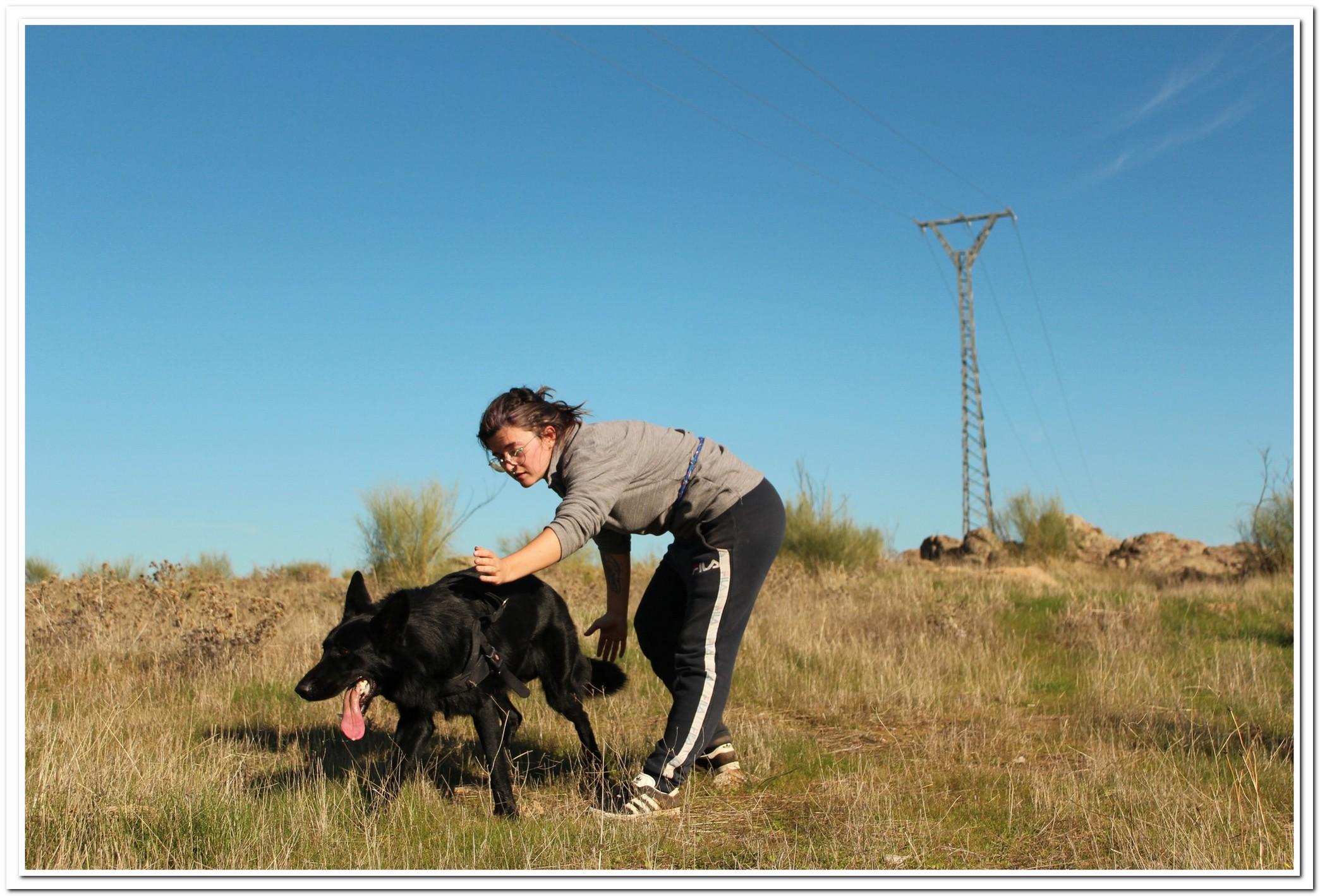 La adiestradora da la señal a Lobo para que inicie la detección debajo de la línea eléctrica a prospectar. Imagen: AMUS