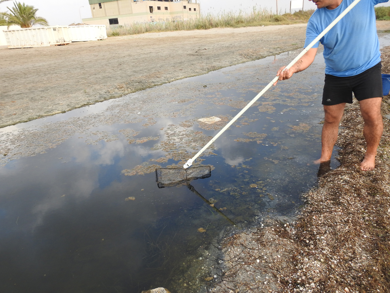 Pescando al fartet en las aguas estancadas. Imagen: EEA