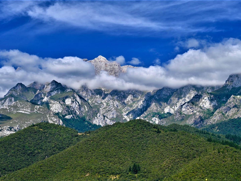 Vegetación de alta montaña en los Picos de Europa. Imagen: F. I. Pugnaire / CSIC