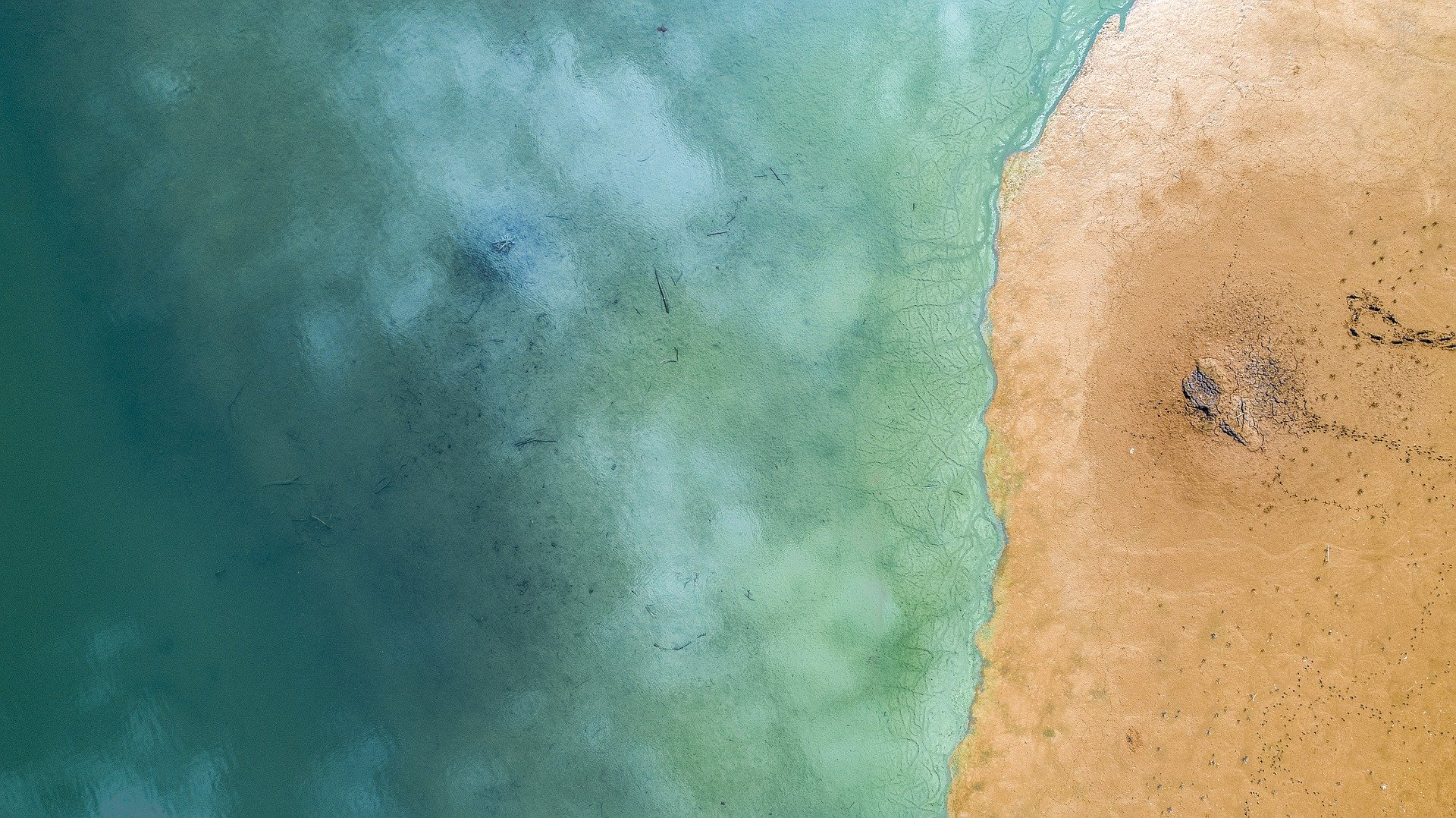 Los sedimentos marinos desempeñan un papel clave en los ecosistemas. Imagen: CSIC /Pixabay