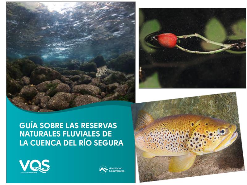 Portada y dos fichas de la publicación. Créditos: Javier Murcia Requena (Proyecto V.O.S./Asociación Columbares)