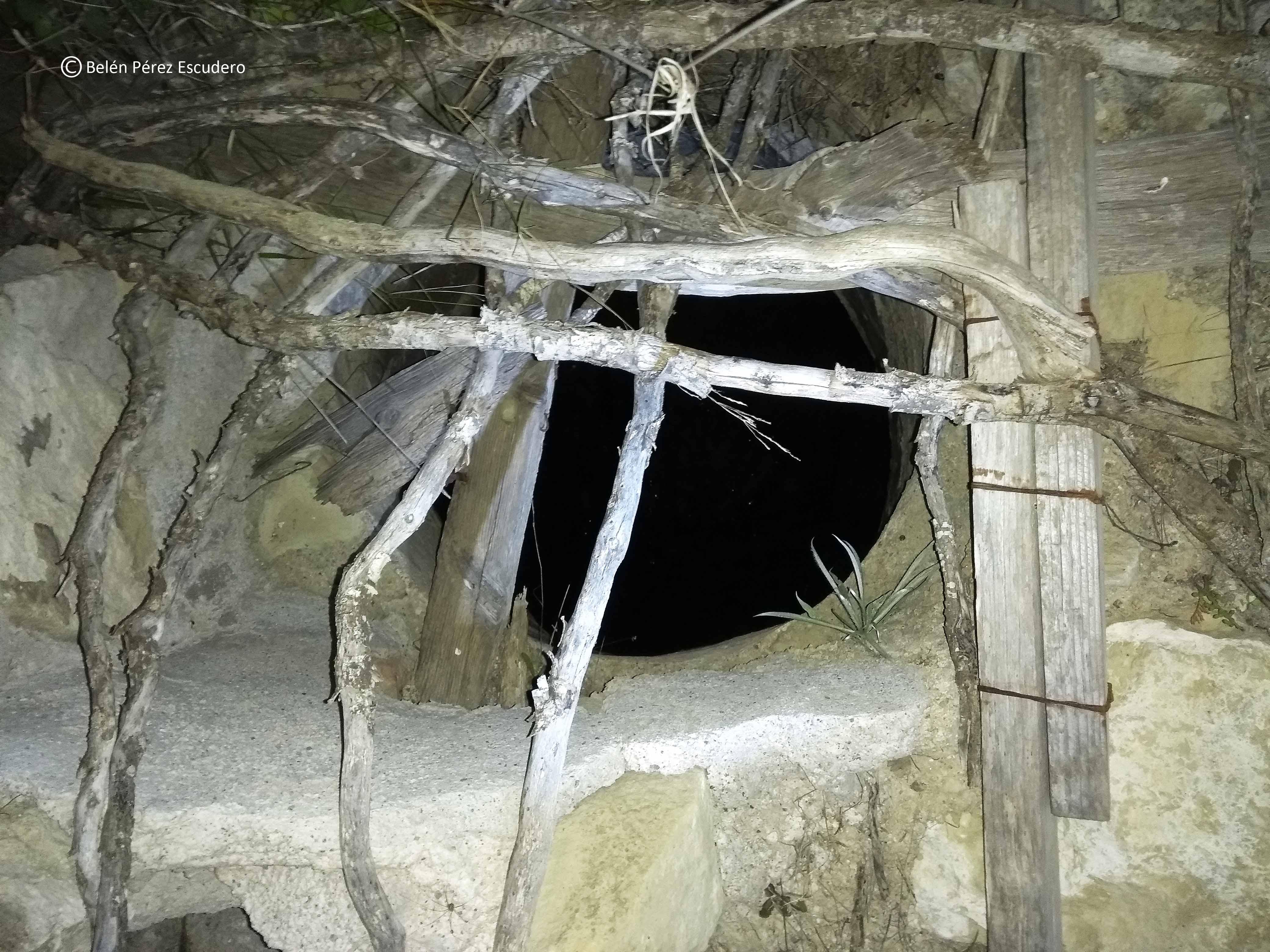 La presencia del pozo ha sido trasladada a la Administración. Imagen: Belén Pérez Escudero