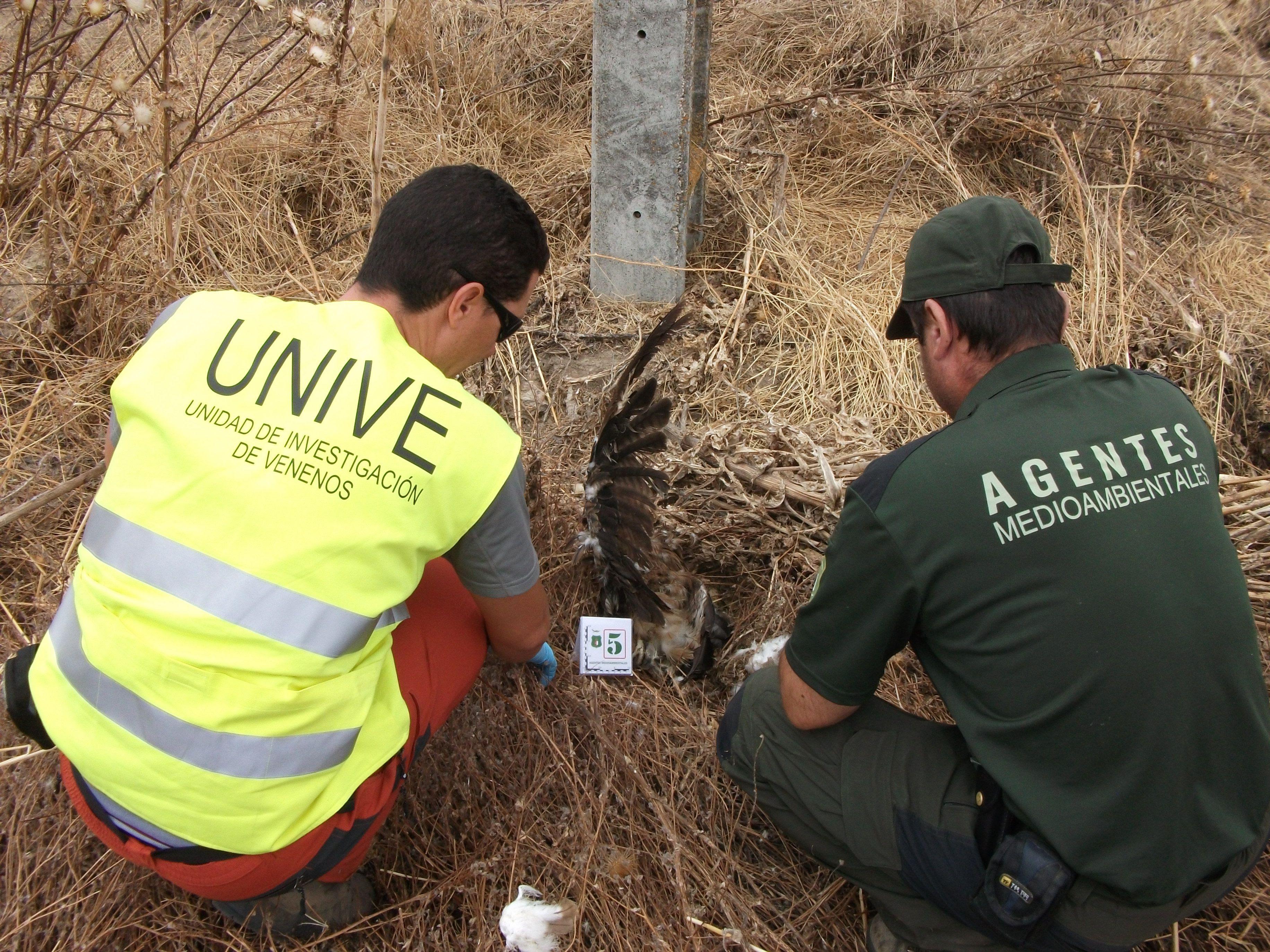 Patrulla especializada en detección de venenos. Imagen: @UNIVE Toledo / WWF