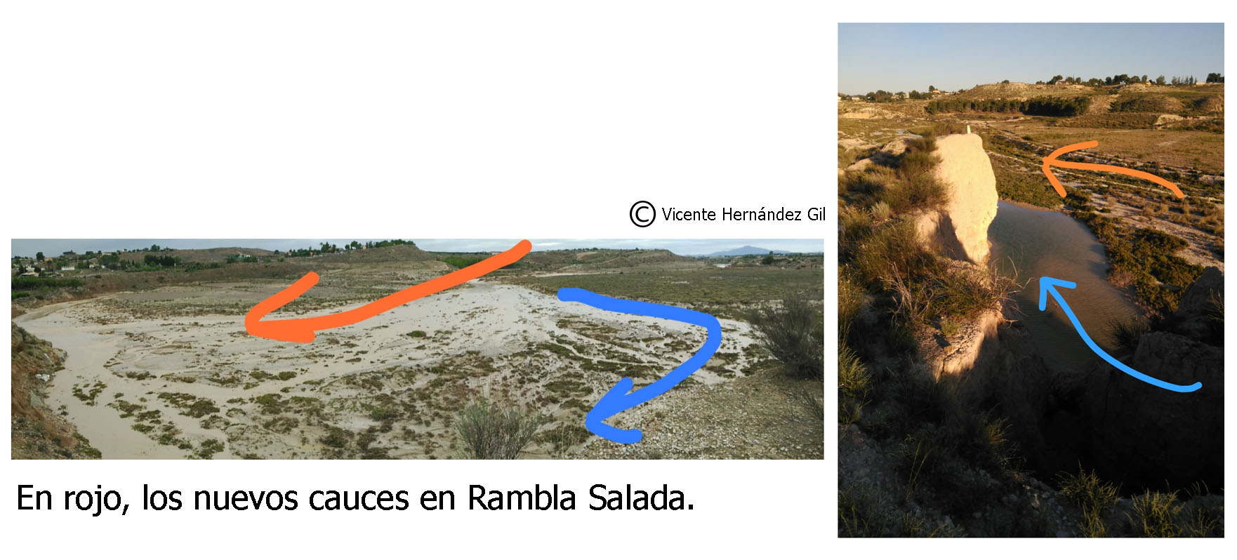 A la izquierda, la imagen de la curva socavada por el nuevo cauce (en rojo). A la derecha se aprecia el talud -en las proximidades del aula de naturaleza-. La charca es lo que queda del viejo cauce, cuya corriente lamía la base, con riesgo de perderse por la erosión. Imágenes elaboradas por Vicente Hernández Gil