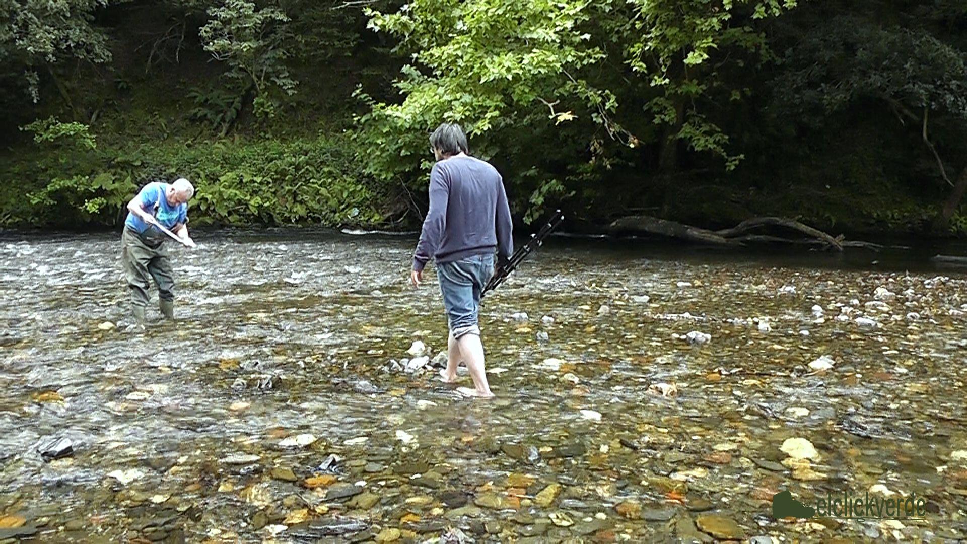 Juan Carlos Cardesín y Antonio Tapia, dos artistas en busca de la vida del fondo del río.