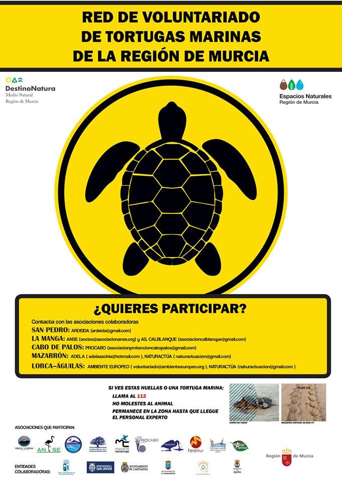 Red de Voluntarios del Plan Alerta Tortuga en la Región de Murcia
