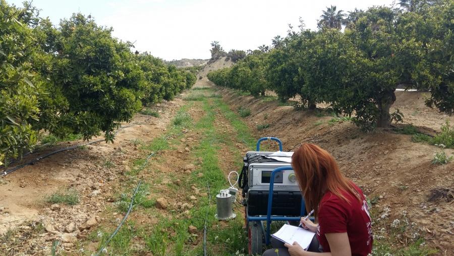 Los científicos están realizando mediciones sobre los gases de efecto invernadero en fincas diversificadas de la Región. Imagen: UPCT