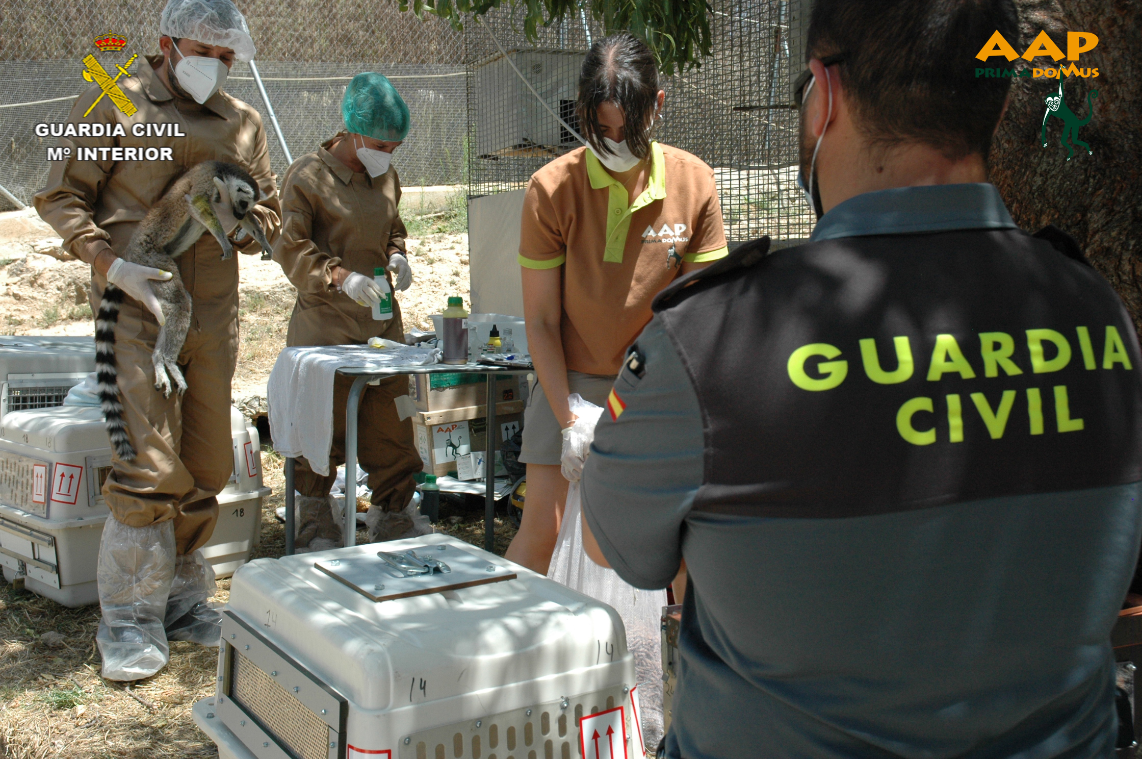 Un momento del rescate. Imagen: Guardia Civil de Albacete