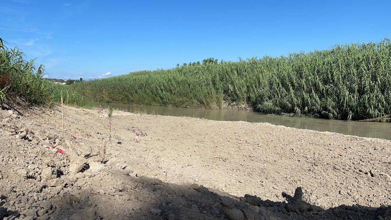 Playa fluvial de Las Peñetas, una zona tradicional de uso público del río Segura, ya recuperada. Imagen: ANSE