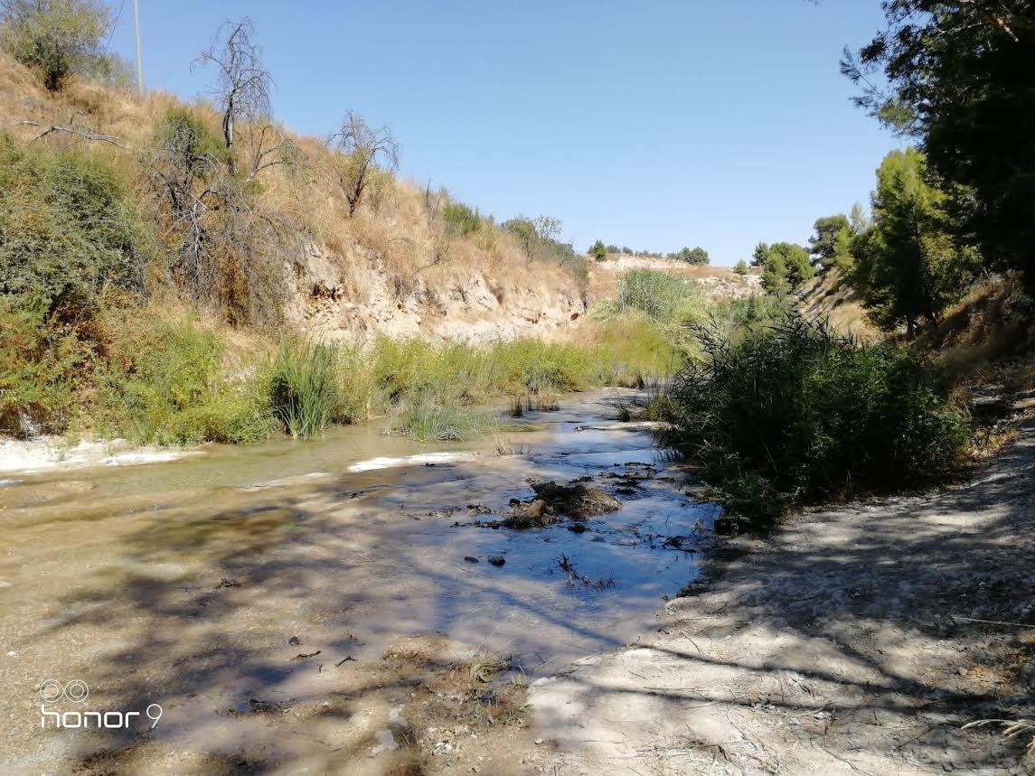 El entorno de Río Puente, un lugar entrañable para los vecinos de Bullas. Imagen: Pepe Ortega