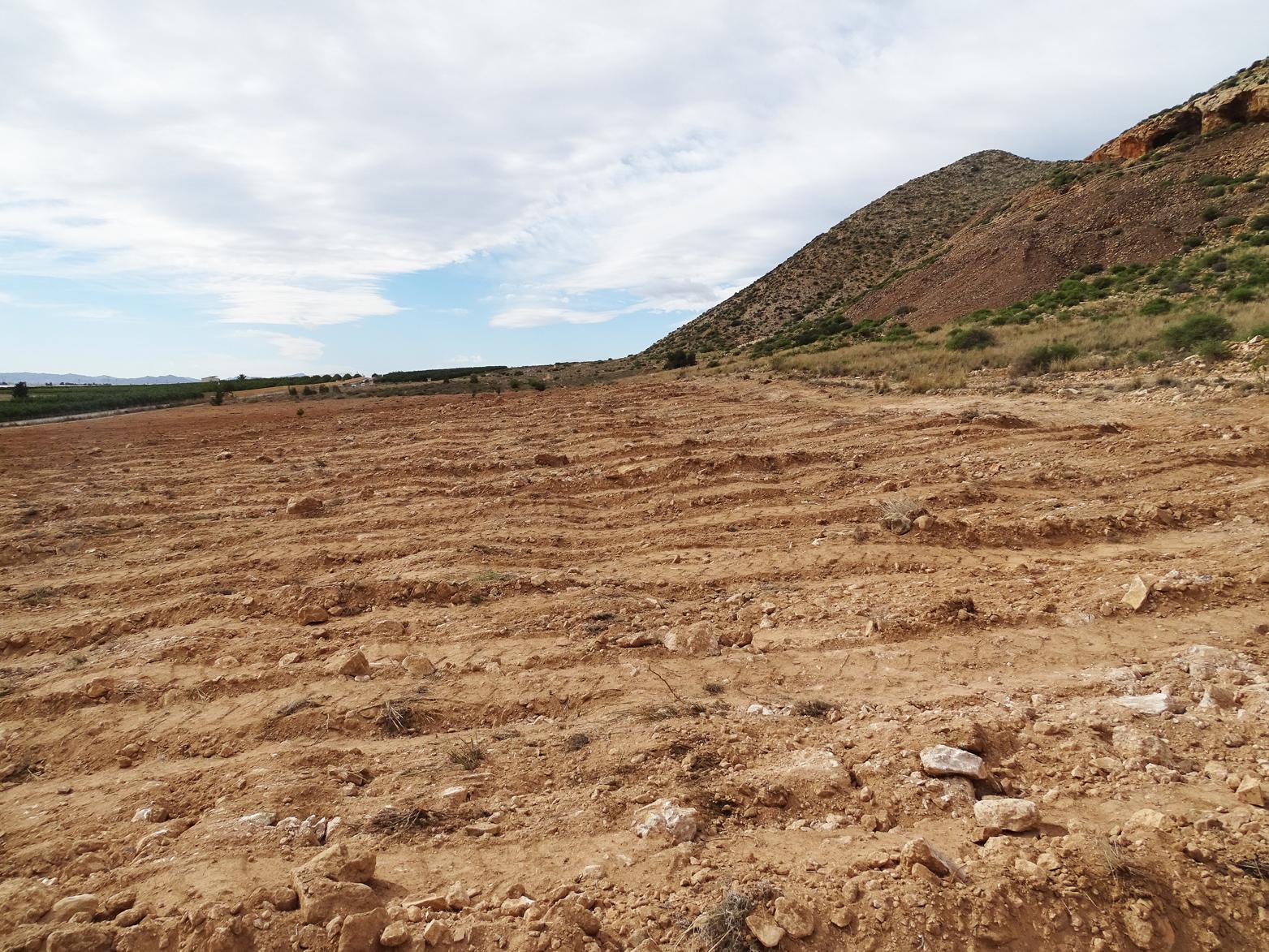 Roturaciones detectadas, según informa ANSE, en el interior de zonas protegidas afectando al Paisaje Protegido del Cabezo Gordo y a la Zona de Especial Conservación de la Red Natura 2000. Imagen: ANSE