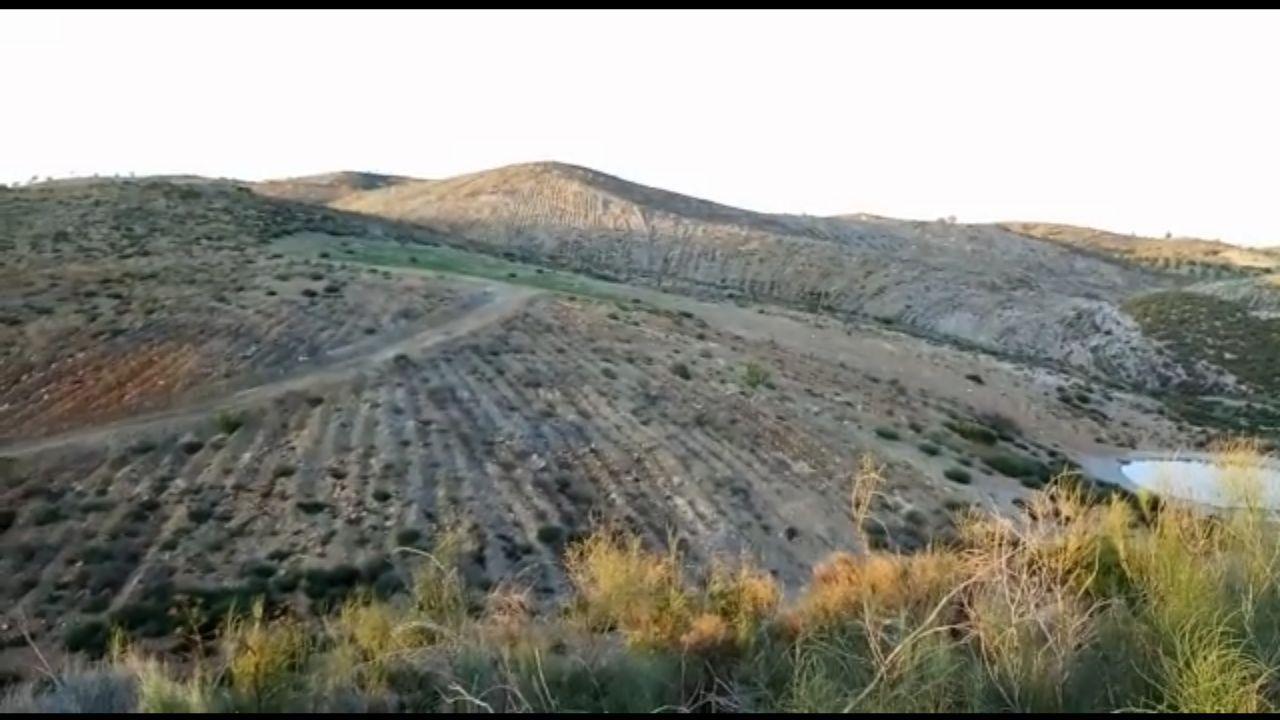 Roturación en Lorca denunciada por Ecologistas en Acción. Imagen: Ecologistas en Acción