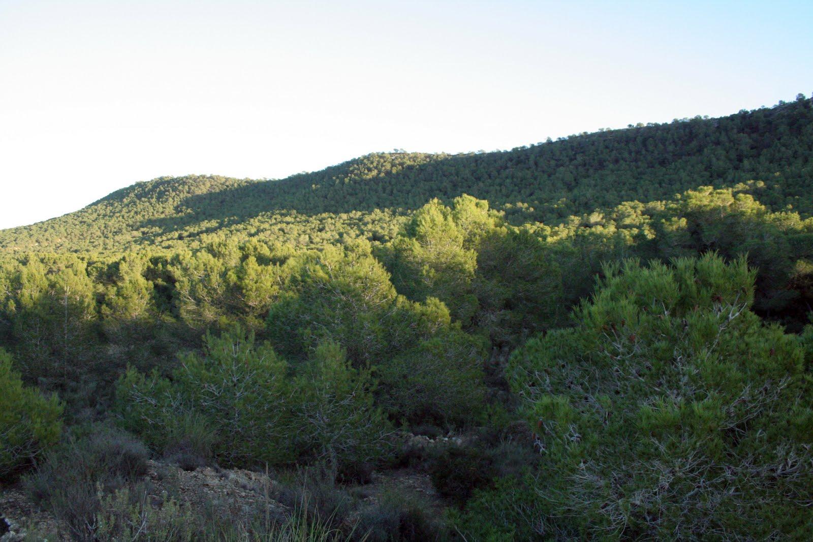 Sierra de Escalona. Imagen de archivo de la Generalitat Valenciana