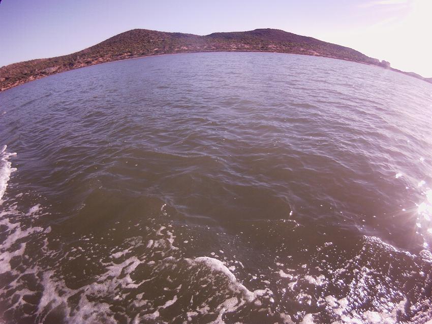 Sopa verde en el Mar Menor. Imagen de superficie, tomada el 1 de abril por Adrián Aguilar