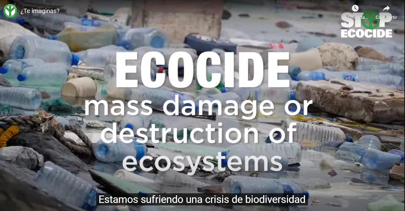 Fotograma del vídeo de la campaña de la Fundación Stop Ecocidio