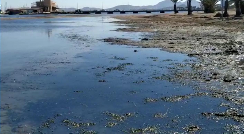 Imagen extraída del vídeo elaborado por la Plataforma para la Recuperación de la Playa de Los Urrutias y su Entorno