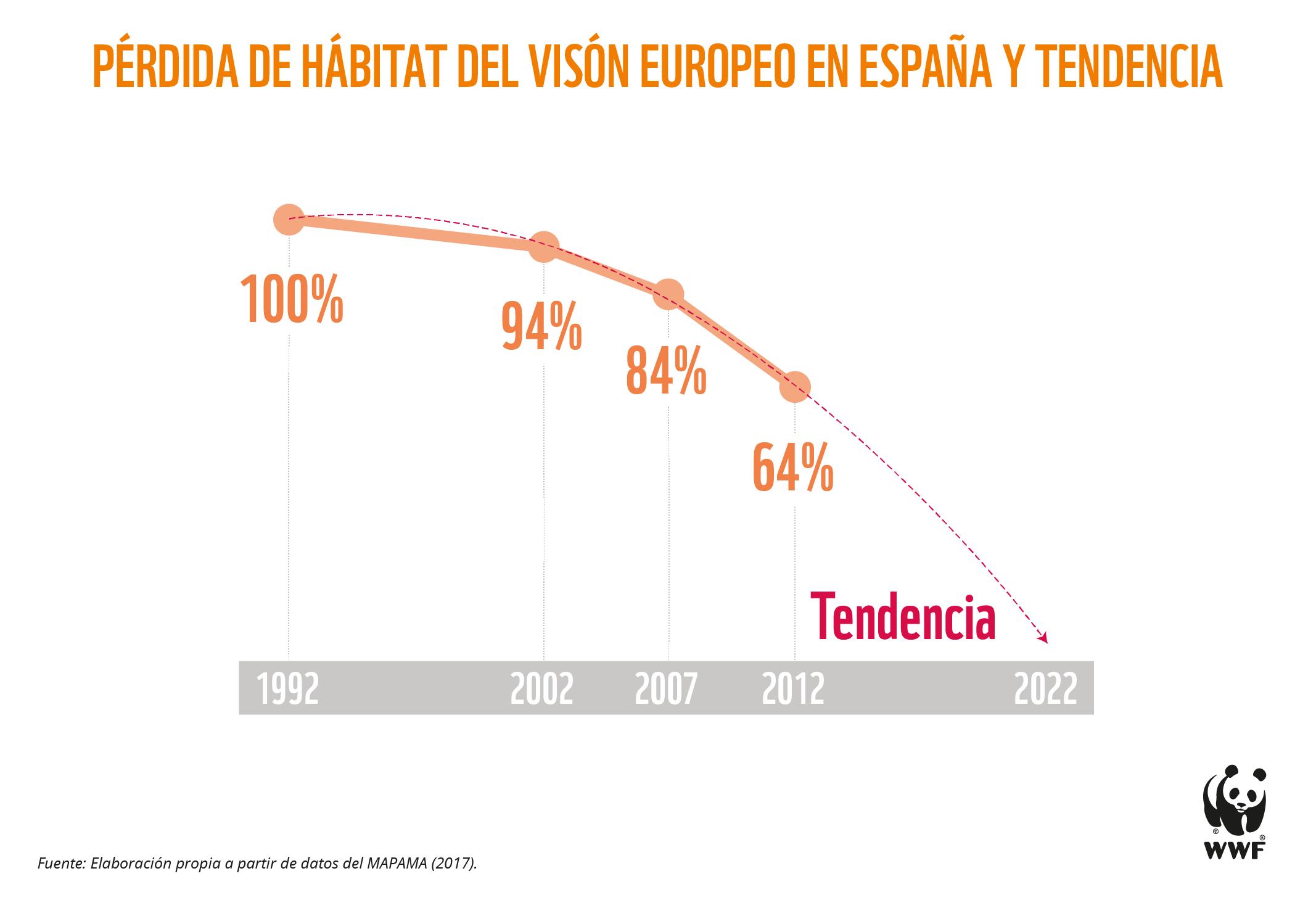 El visón europeo ha desaparecido ya en más del 90 % de su área de distribución original al ser desplazada por su congénere americano. Imagen: WWF