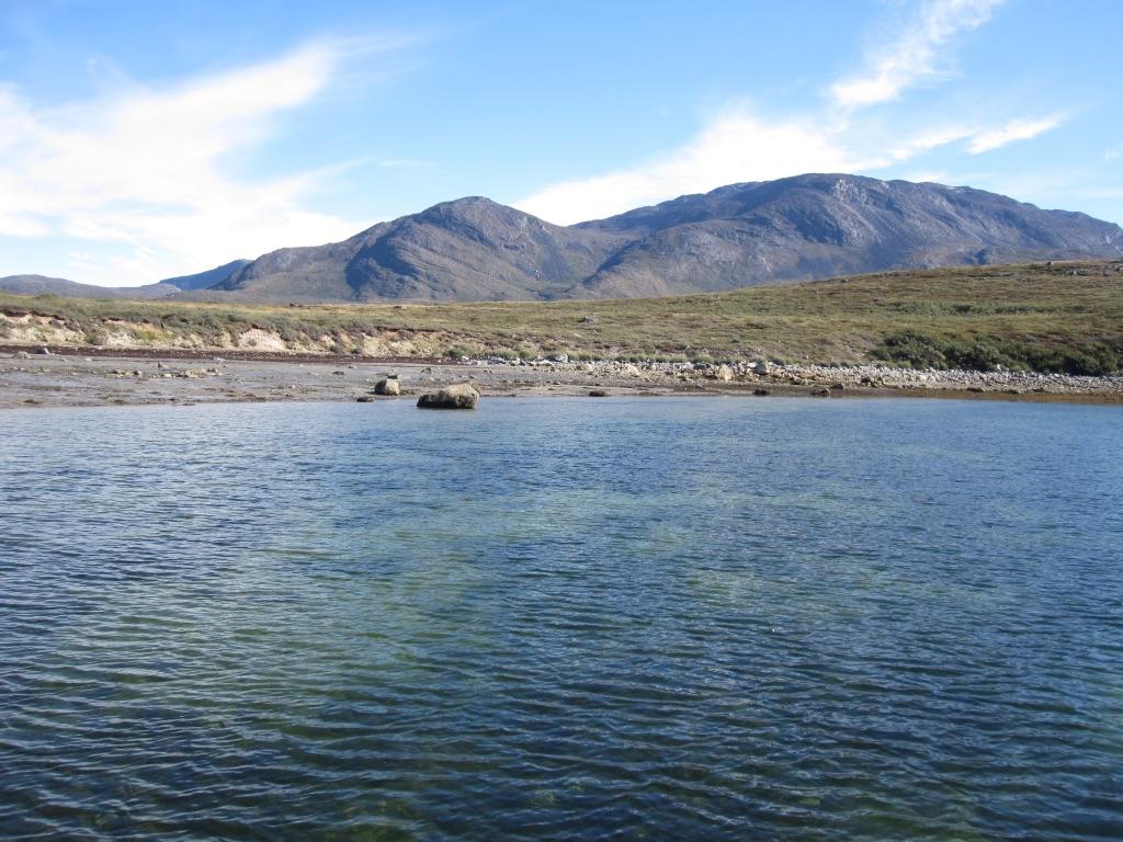 Costas de Groenlandia donde se han estudiado las praderas submarinas de 'Zostera marina', que se aprecian como manchas oscuras. Imagen: Núria Marbà