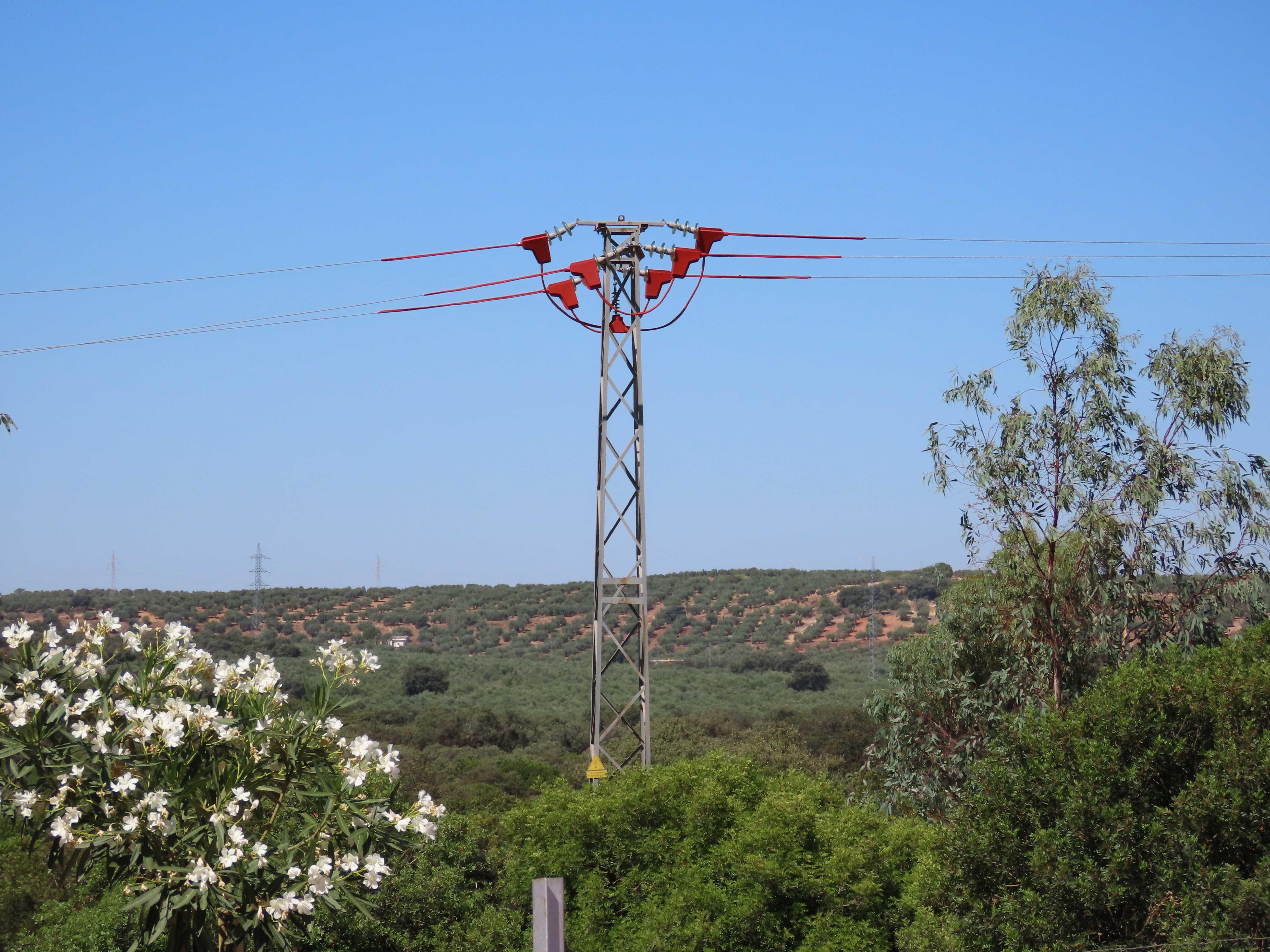 Uno de los apoyos, ya aislado, del tendido eléctrico corregido en la provincia de Jaén. Imagen: GREFA