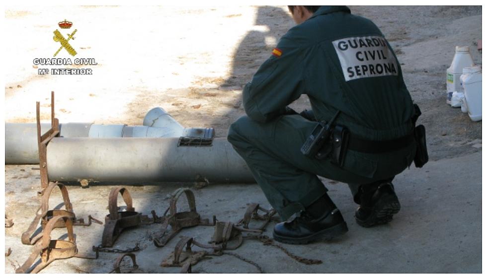 En la operación se han localizado elementos prohibidos para la caza como cepos y jaulas trampa. Imagen: Seprona