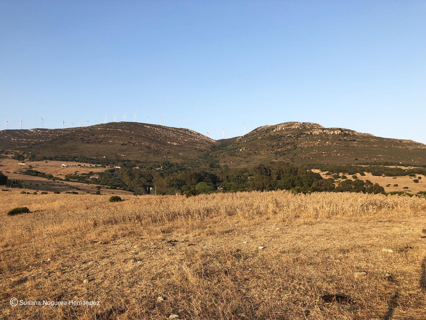 Sierra de Enmedio, coronada por un parque eólico. Imagen: Imagen: Susana Noguera Hernández