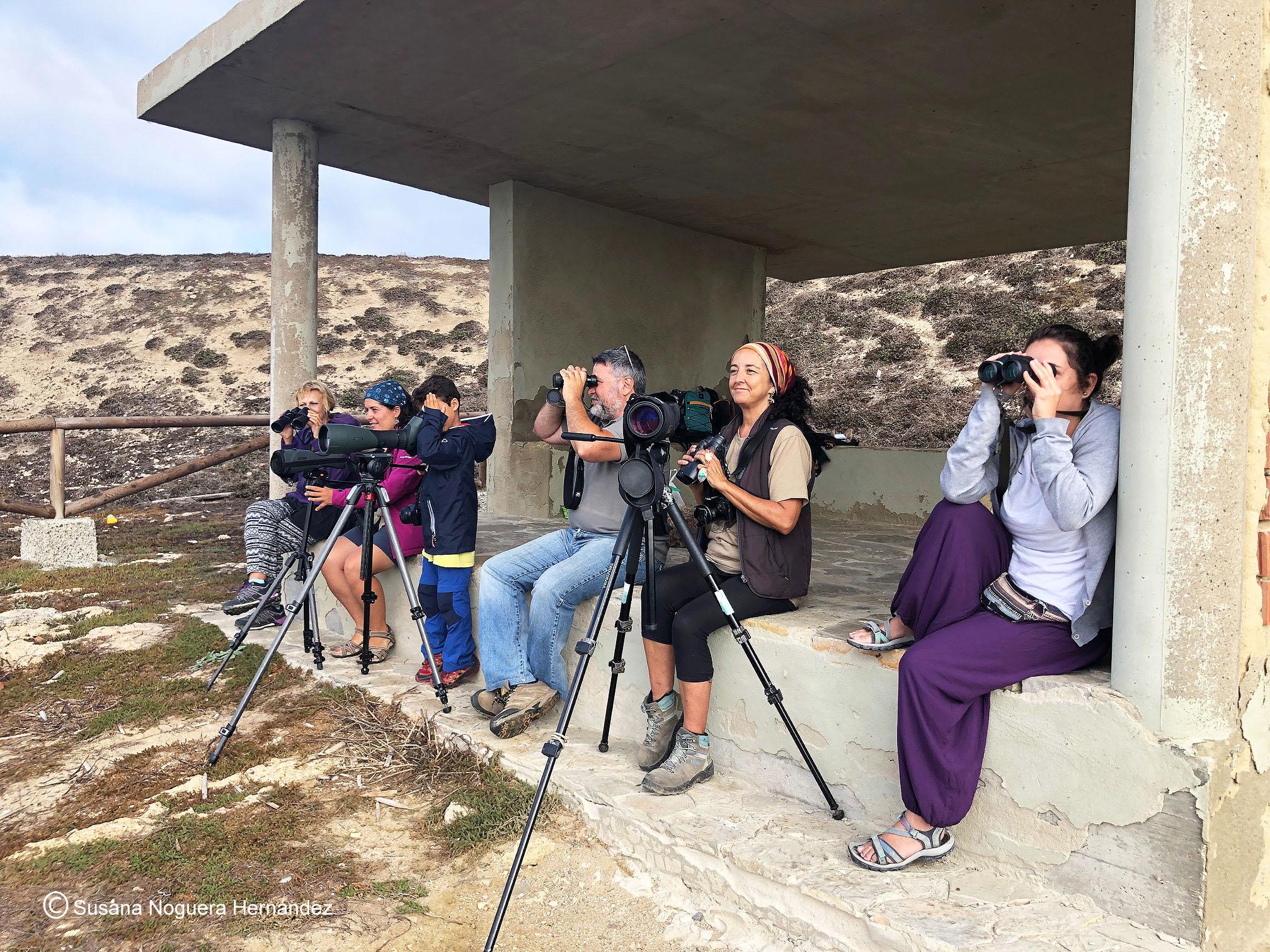 Voluntarios, durante la jornada de censo en la Isla de las Palomas. Imagen: Susana Noguera Hernández