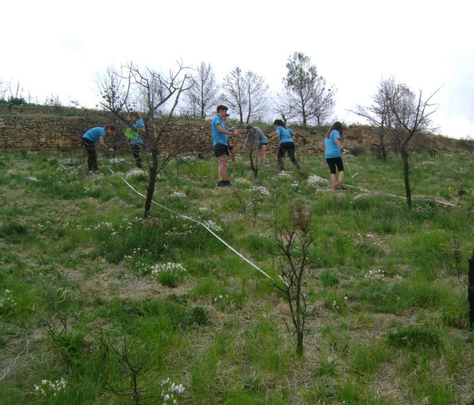 Voluntarios participantes en el proyecto piloto. Imagen: Generalitat Valenciana