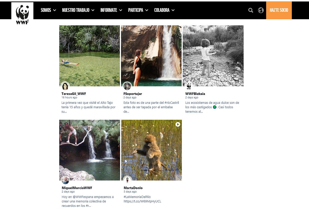 Captura de la web de WWF 'La memoria del río'